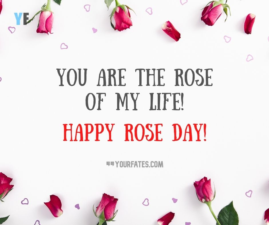 Rose Day Wishes 2021