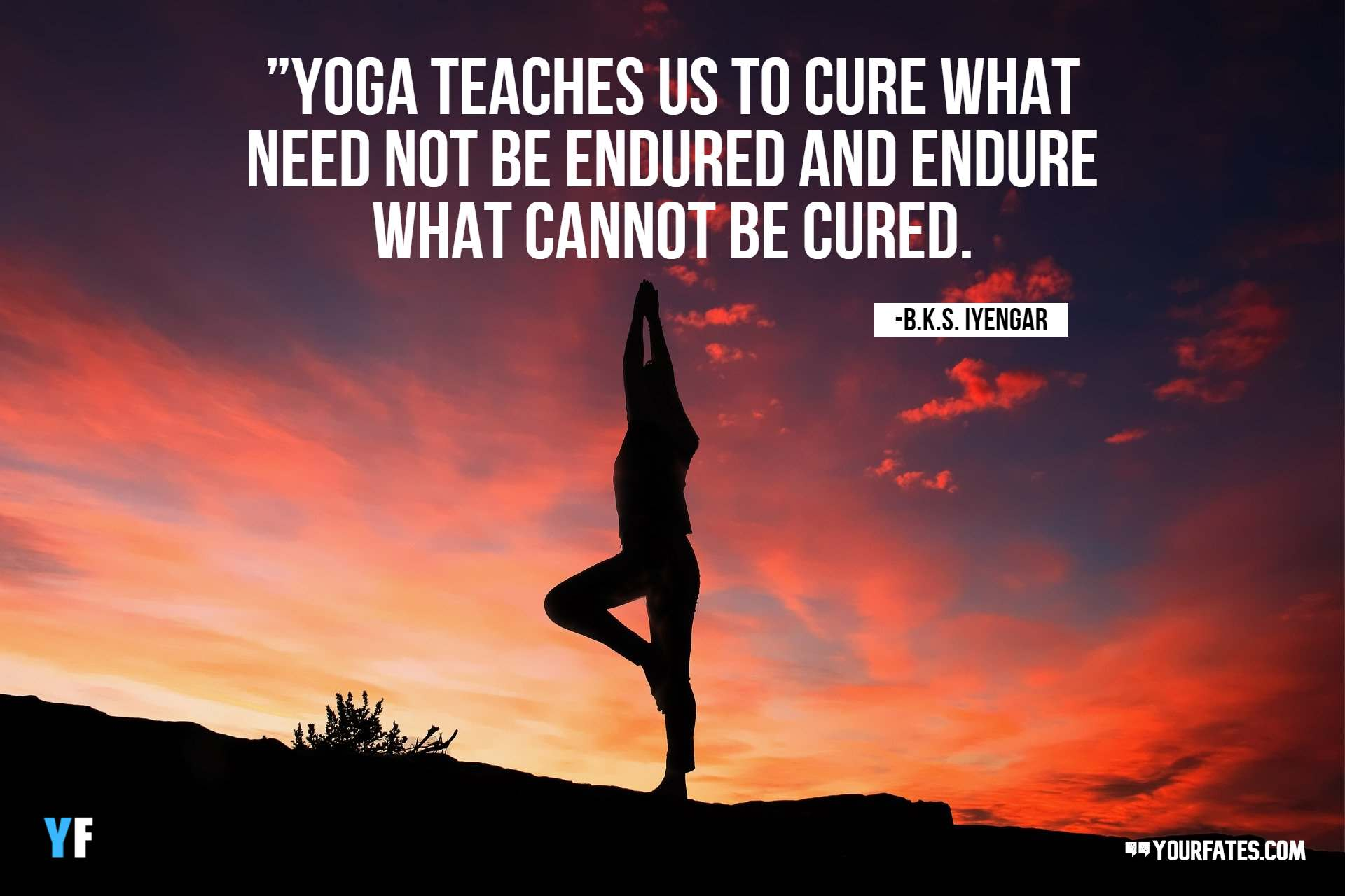 yoga quotes inspirational