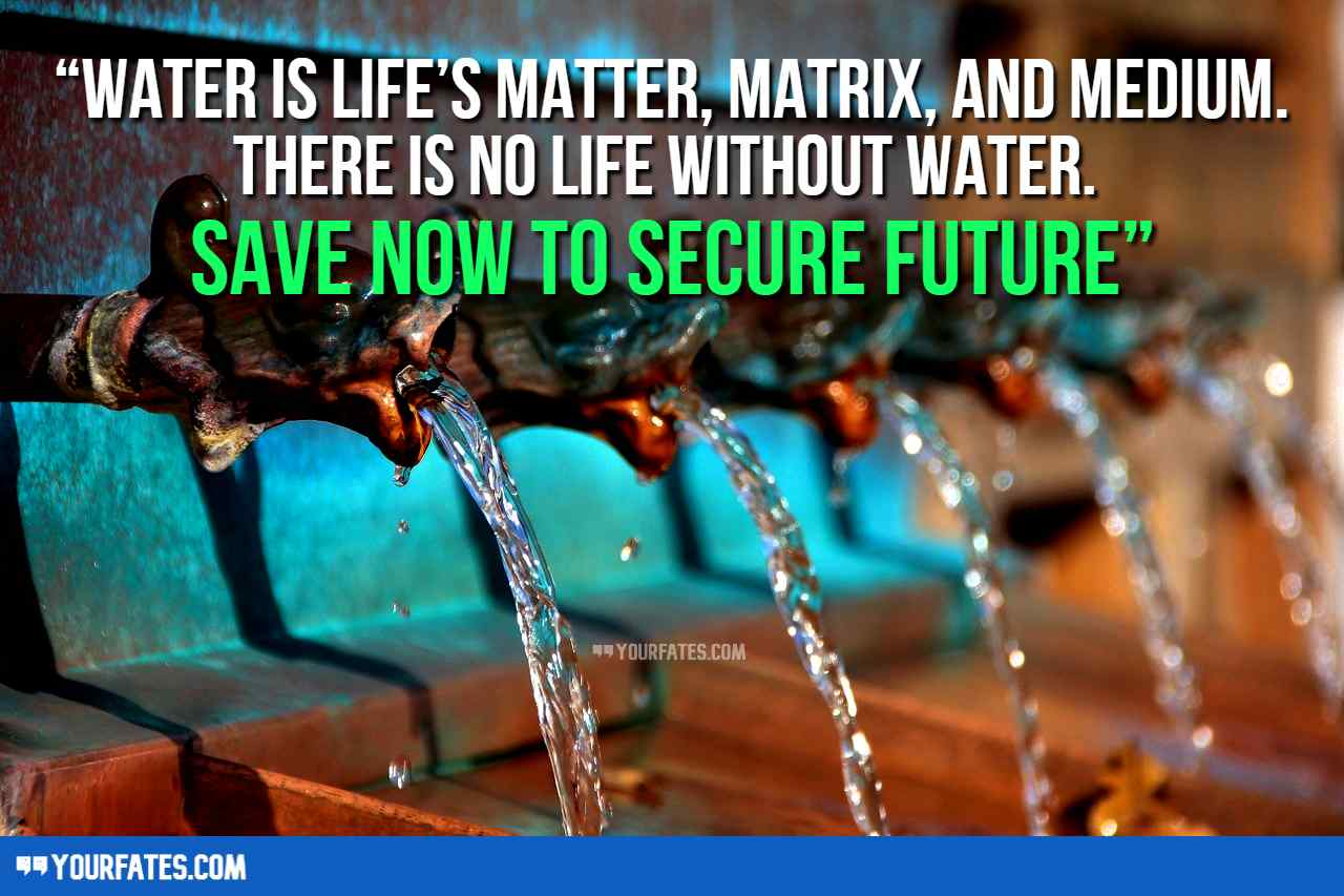 Water saving Quotes