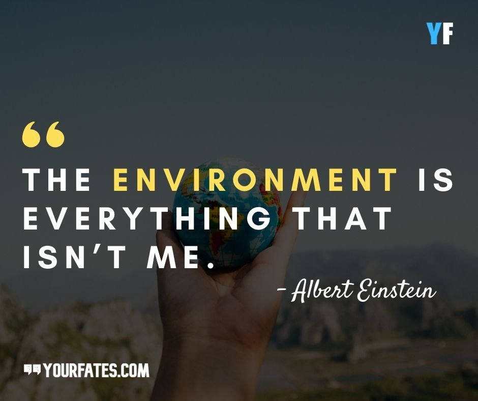 world environment day images with quotes