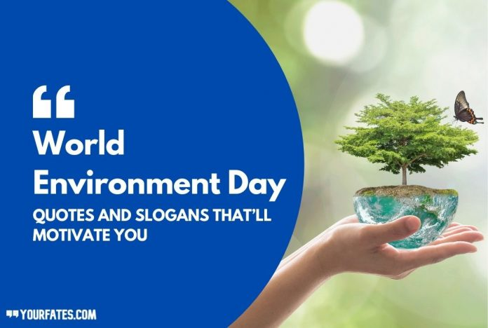 World Environment Day Quotes