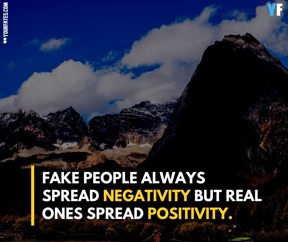 fake people Quotes