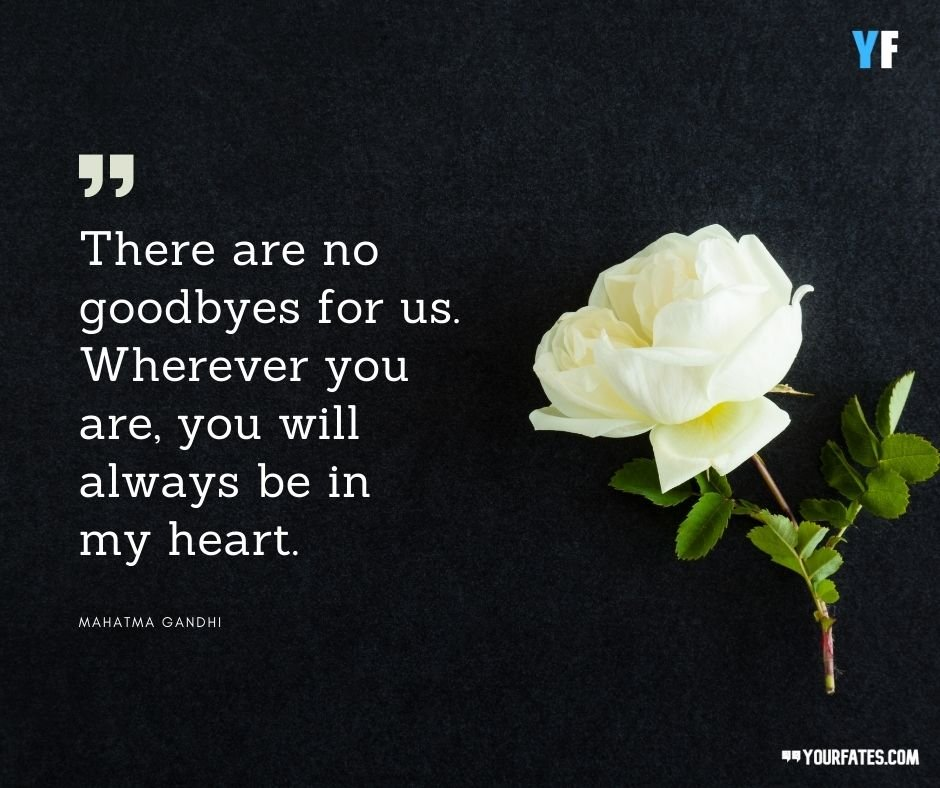 condolences quotes for loss of family