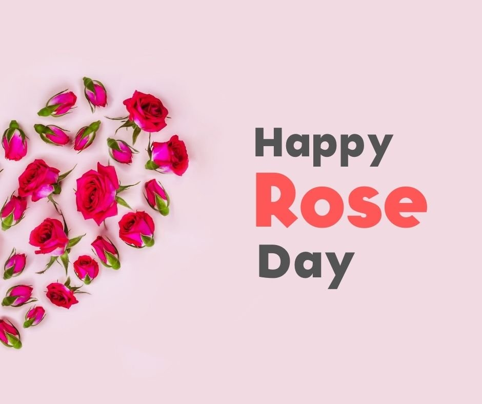 Rose Day Wishes Images
