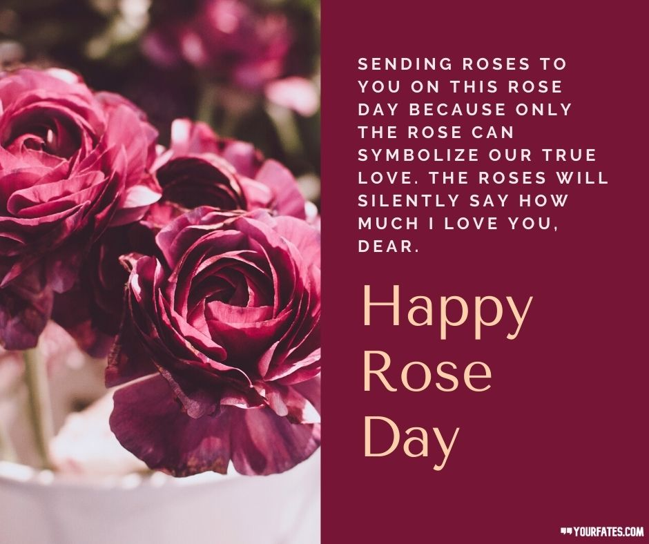 Rose Day Wishes for Boyfriend Read more https://www.yourfates.com/rose-day-wishes-quotes-and-message/