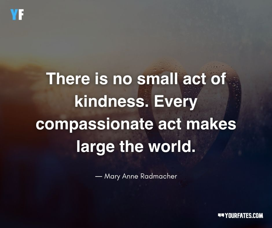 Quotes About Compassion and Empathy