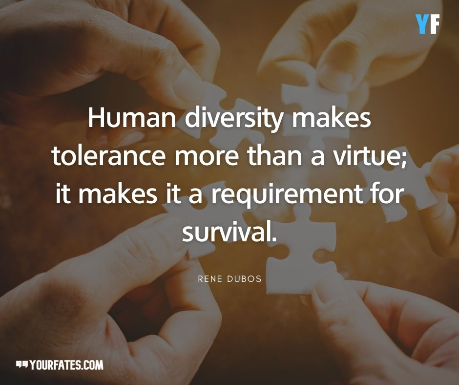 Diversity and Unity Quotes