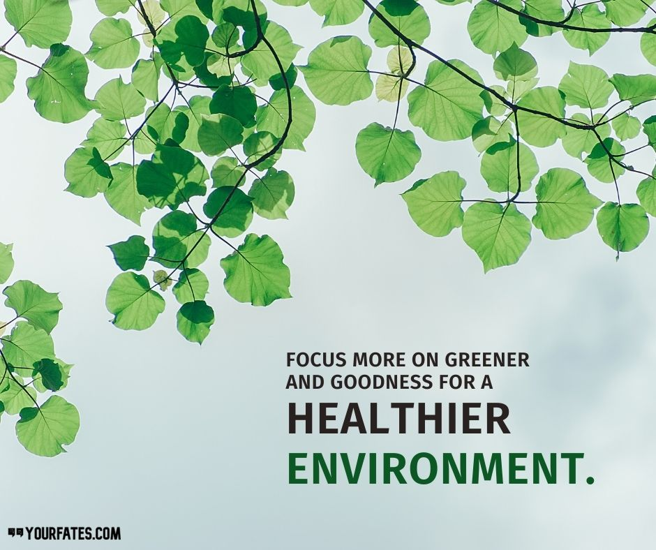 World Environment Day Poster Messages
