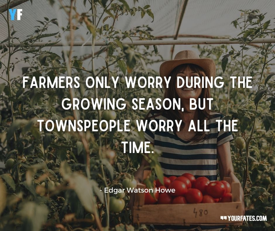 little farmer quotes