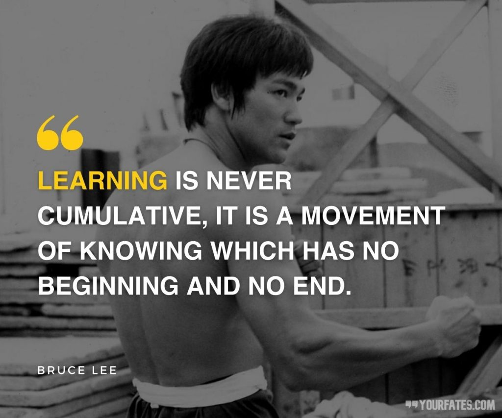 bruce lee quotes about learning
